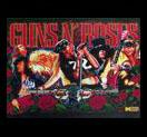 Guns N' Roses - LED Playfield kit